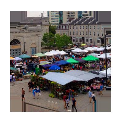 The Kingston Public Market Vendors